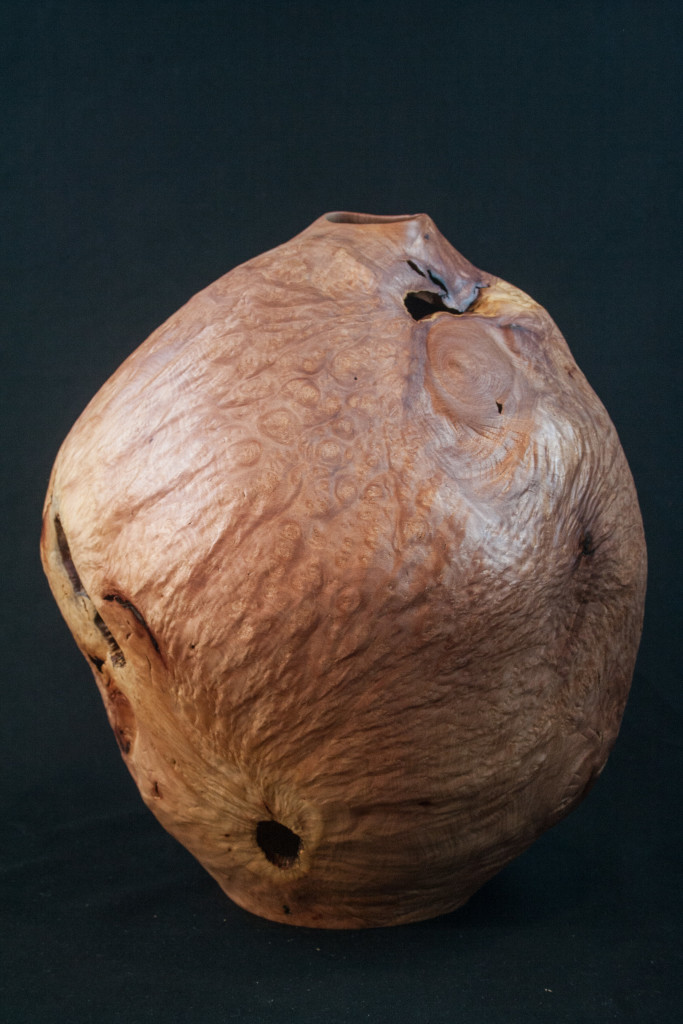 132B Madrone Burl Distorted Hollow Form 12 x 10.........  $795