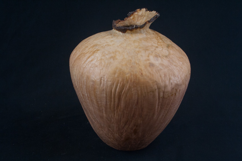 226 Madrone Burl Natural EdgeHollow Form 7.5 x 8.....$199