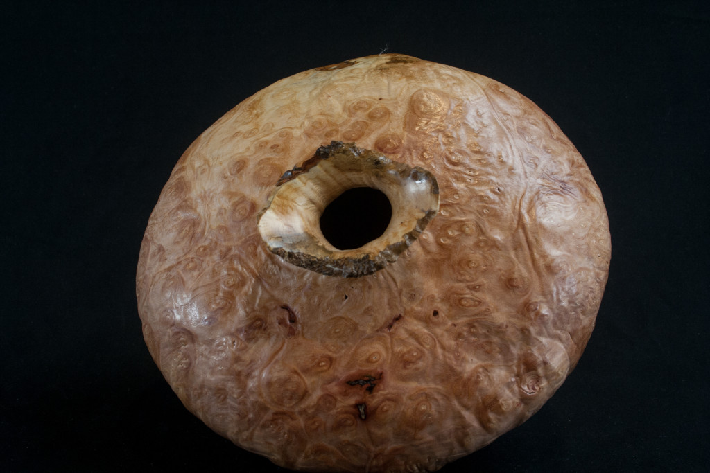 262 Madrone Burl distorted Hollow Form 8 x 9.........  $395