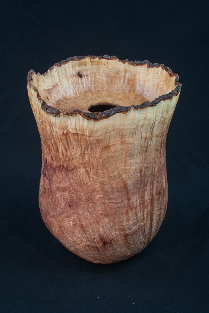 30 Madrone Burl  Natural Edge Distorted Hollow Form  7,5 x 10 ........ $479   .........SOLD