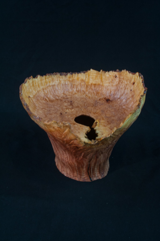 41A Madron Burl Natural Edge Distorted Hollow Form 9 x 9 ..........  $525