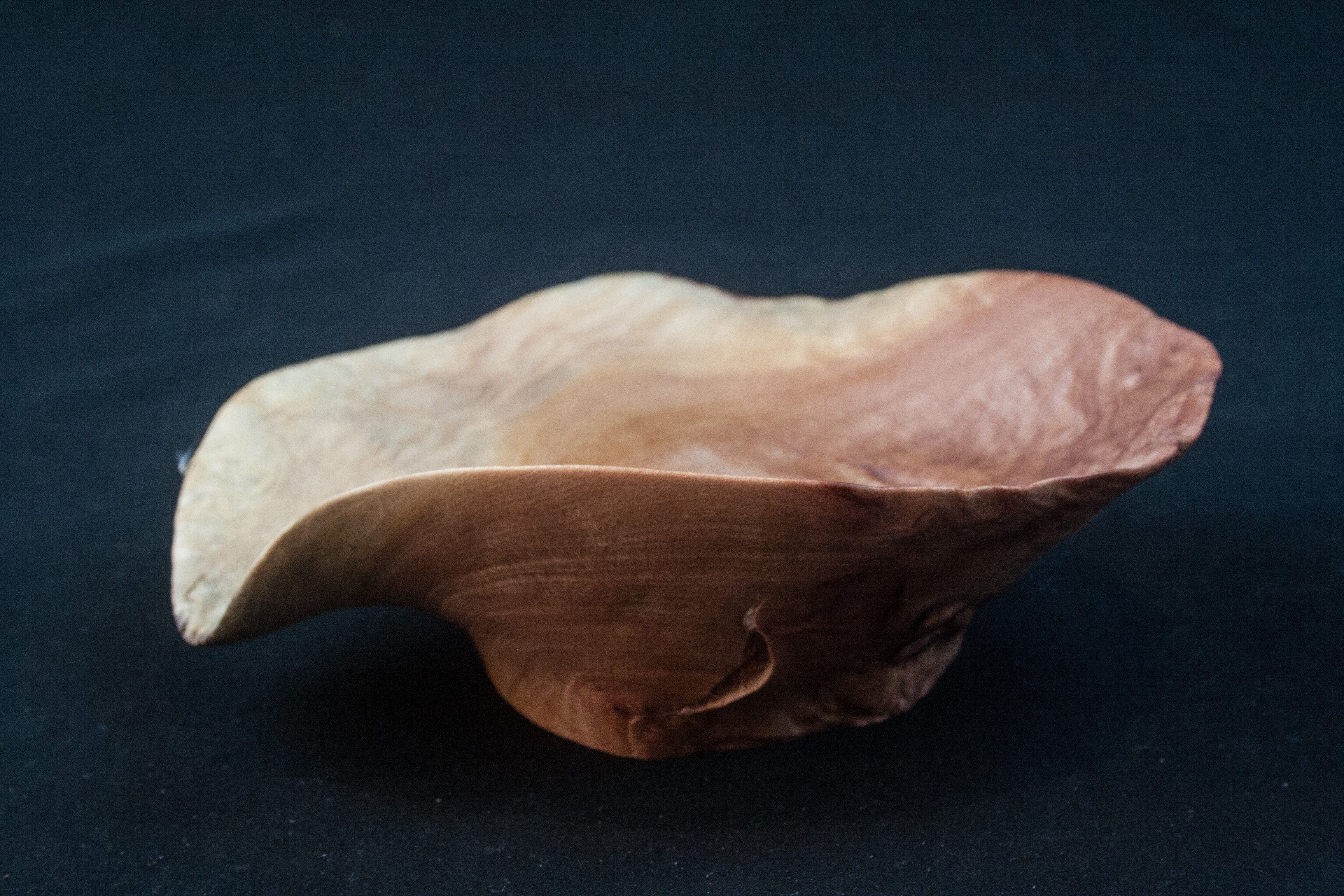 124 Madrone Burl Distorted 2 x 6.5 ...... $29......SOLD