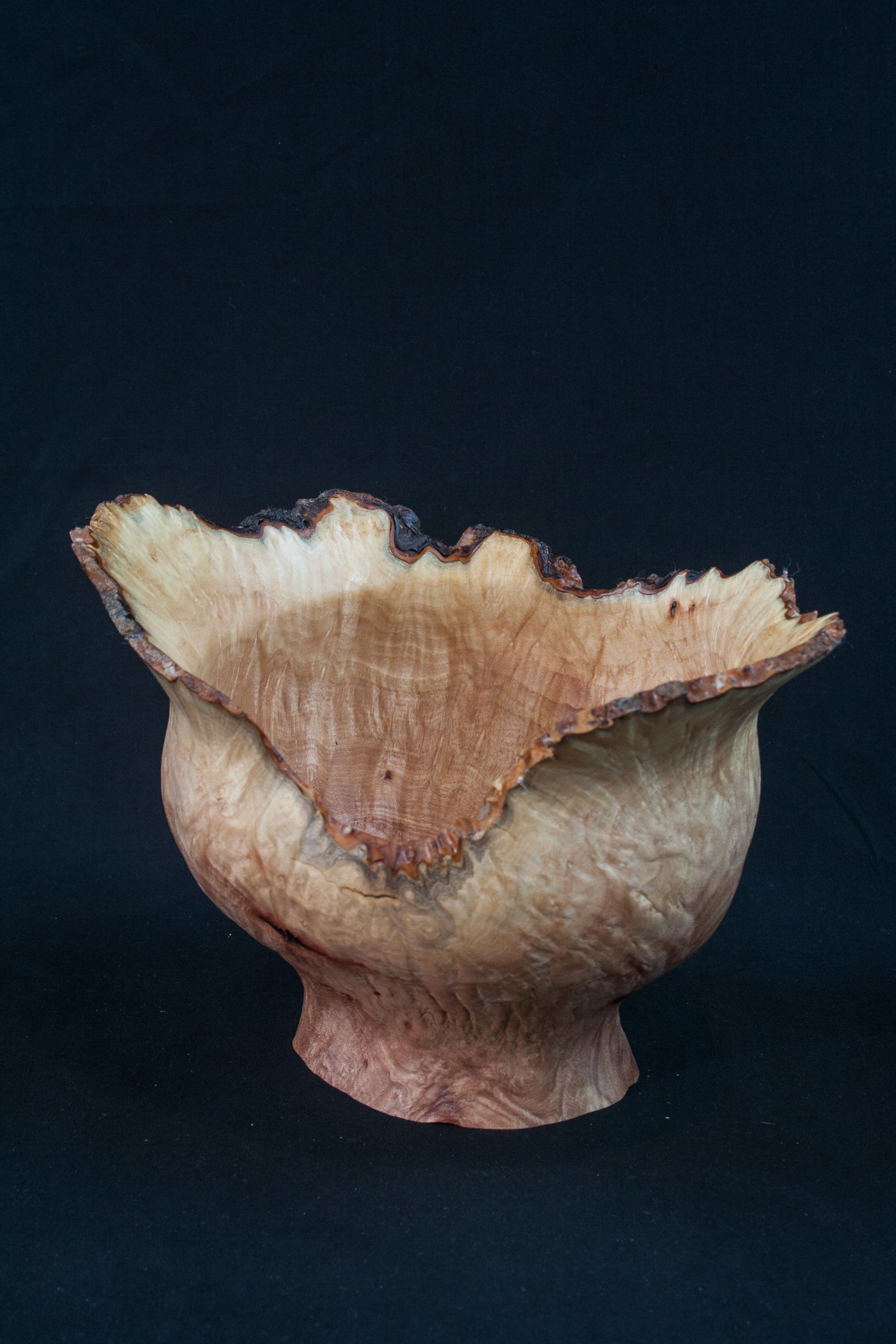 36A Madron Burl Natural Edge Distorted Hollow Form 8 x 6 ........   $289 .........   SOLD