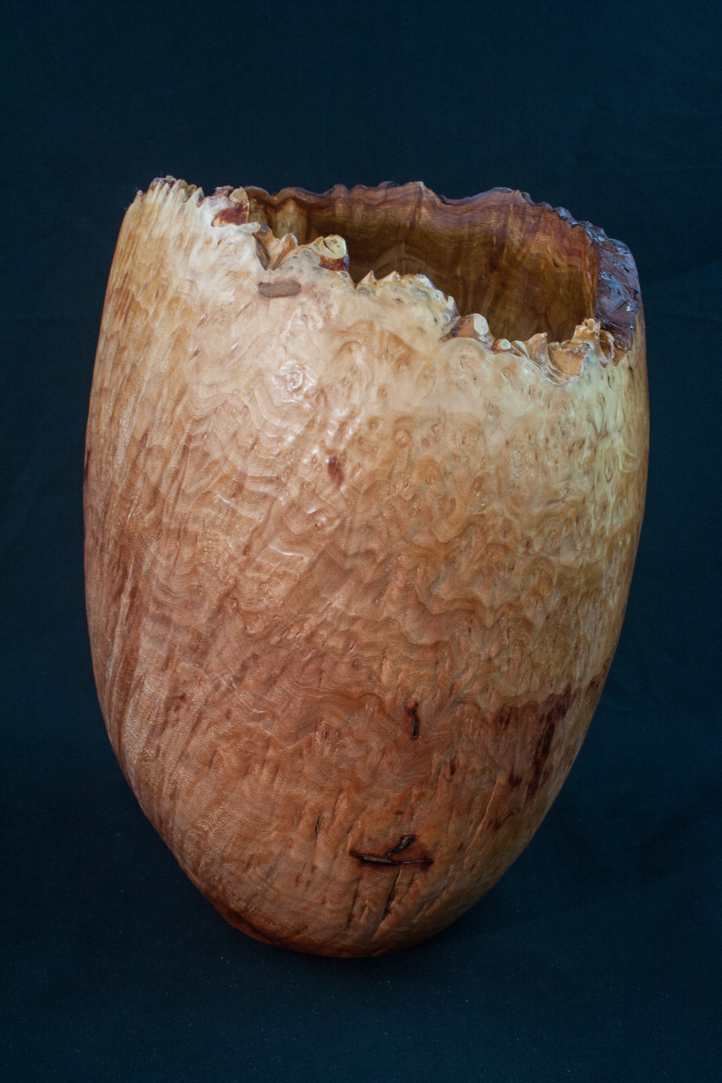 48 Madron Burl Natural Edge Distorted 8 x 11 ........... $329