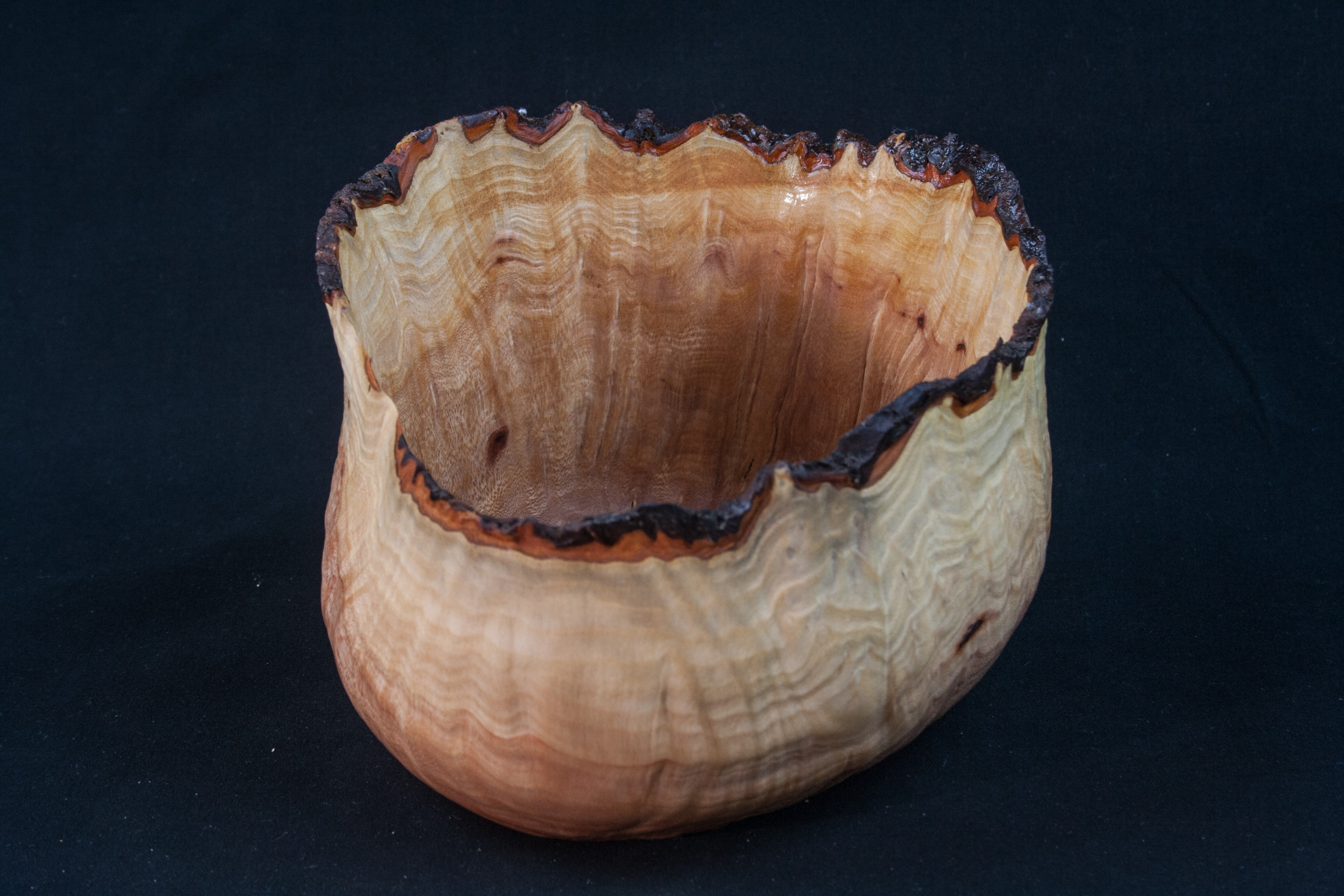 59 Madrone Burl Natural Edge Distorted 6 x 4 ...... $89......SOLD