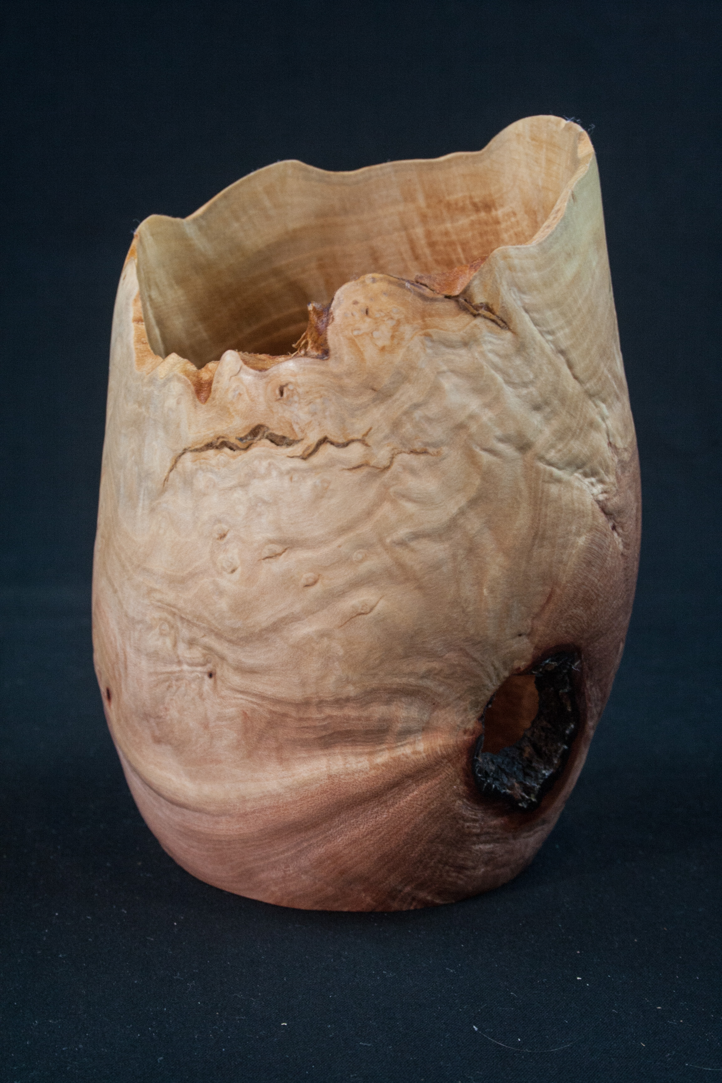 78 Madrone Burl Natural Edge Distorted 4 x 5,5...... $27......SOLD