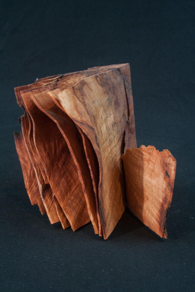 "101 Madrone Root Distorted Book 5 x 4,5......$59.....Currently displayed at ""Dan McGeorge Gallery"" in Jacksonville Oregon.....SOLD"