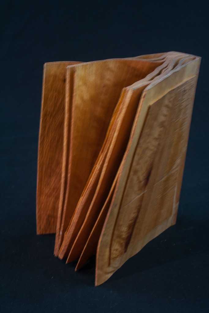 102B Madrone Root Distorted Book 4 x 6......$59